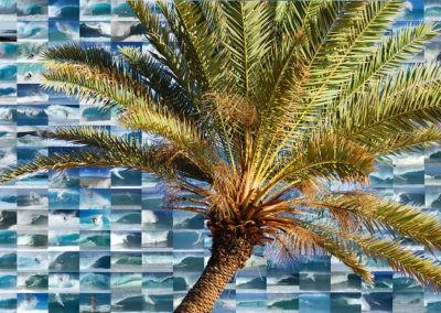 sean-tiner-surf-palm-print