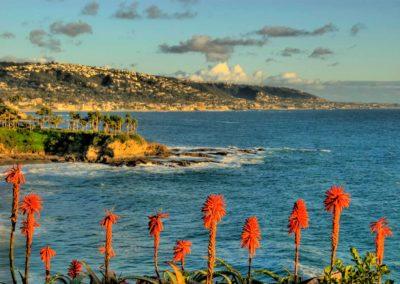 sean-tiner-photography-digital-marketing-lagunab-beach-city