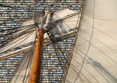 sean-tiner-tall-ships-dana-point